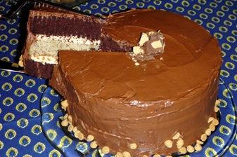 3 layer cake 5