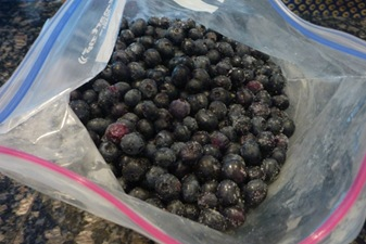 bluieberries for blintz bake