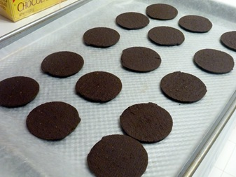 wafers on tray